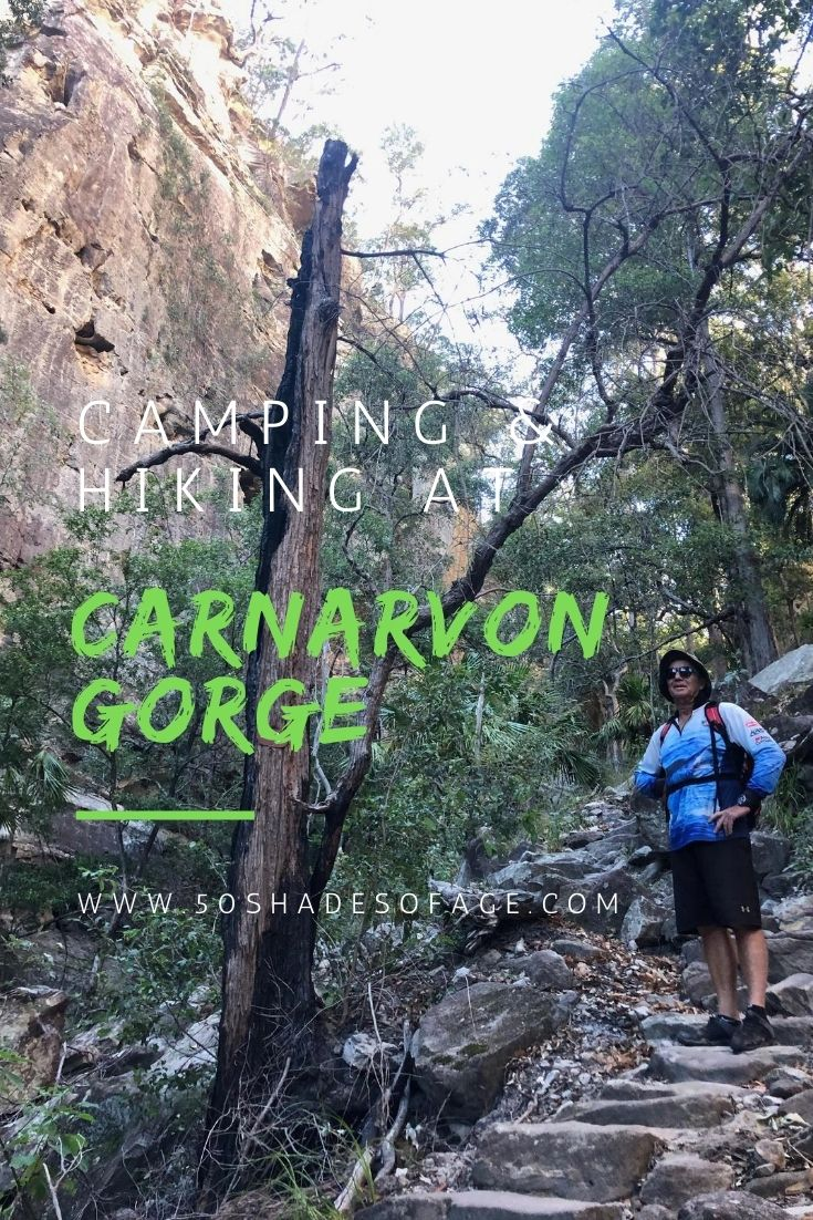 Camping and Hiking at Carnarvon Gorge