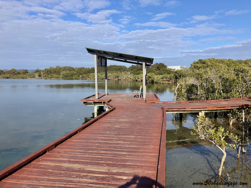 5 Best Things To Do in Currumbin